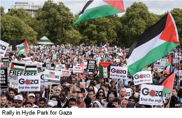 Gaza rally 2.JPG