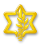 IDF insignia 5090.png
