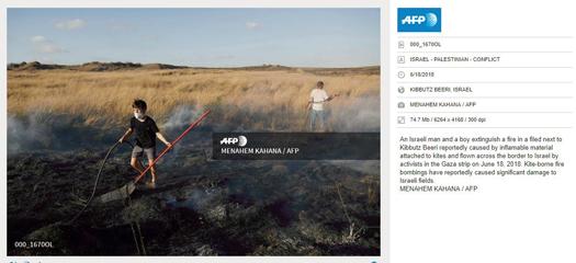 afp activistsfield.jpg